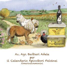 Siamo nel calendario 2021 dell'Associazione Apicoltori Felsinei!